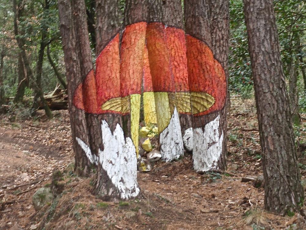 Bosque de Poblet (Tarragona) (1/6)