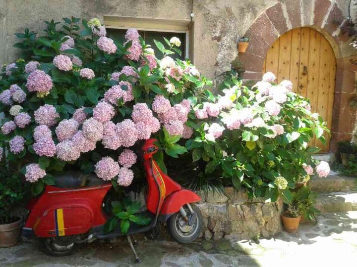 L' Argentera (Tarragona) – Puertas yventanas